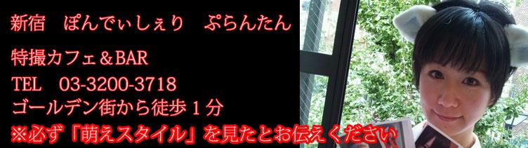 ぽんでぃしぇり ぷらんたん 新宿/大久保/高田馬場 コンセプトカフェバー(コンカフェ)